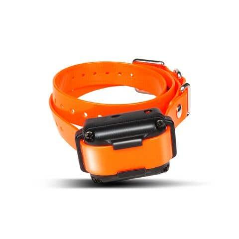 Dogtra iQ Plus Trainer Additional Collar