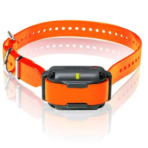 Dogtra 2300NCP Series Additional Collar