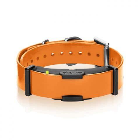 Dogtra ARC Additional Receiver Collar