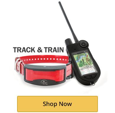 Track & Train