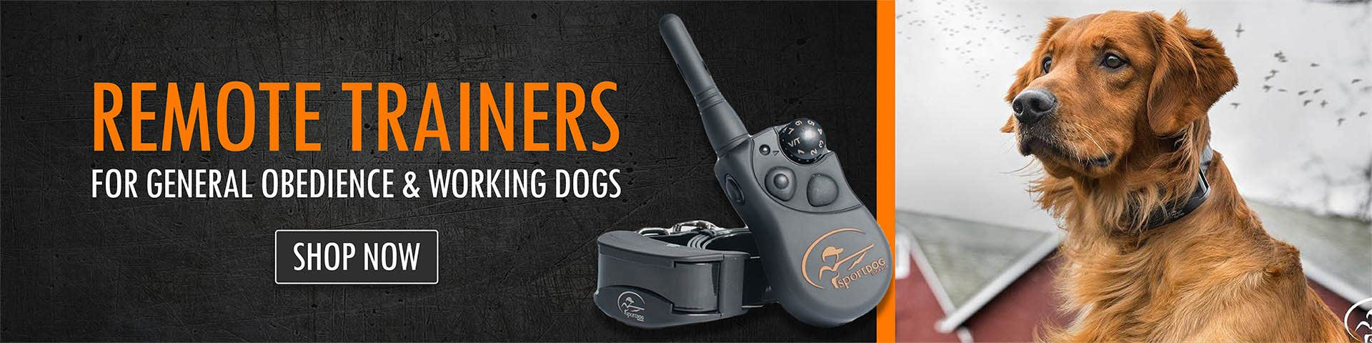 Remote Trainers for general obedience & working dogs