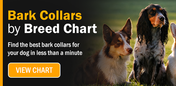Click here to go to our bark collars by breed chart