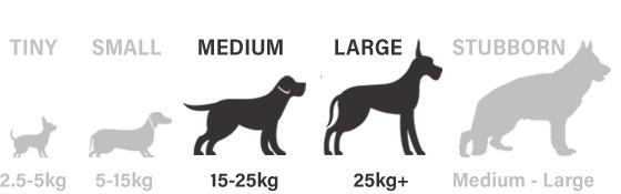 Medium, Large