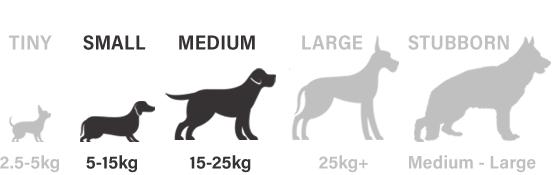 small, medium