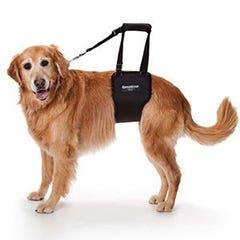 GingerLead Dog Theraphy Rehabiliation Harness