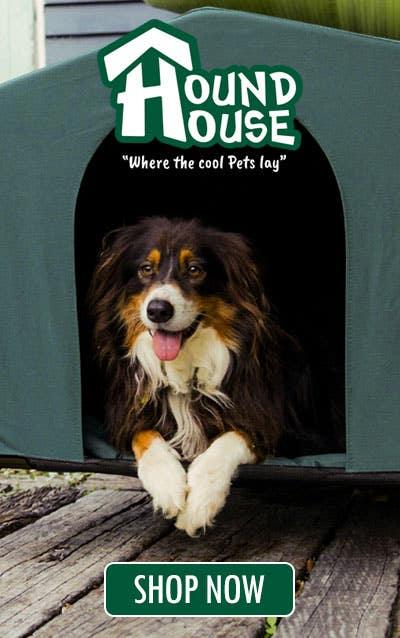 Dog in HoundHouse Dog Kennel