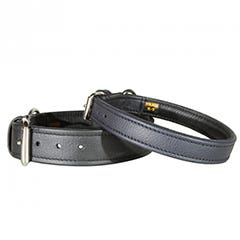 Leather Collar by Julius K9