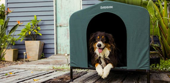 HoundHouse dog kennel